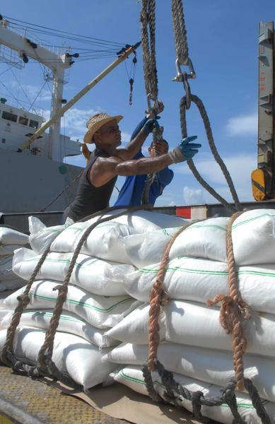"""Trabajadores de la Unidad Básica Económica (UBE) de la Terminal portuaria """"O¨Bourque"""",  de Cienfuegos, perteneciente a la Empresa de Servicios Portuarios Centro, durante la realización de labores de manipulación de carga y pesaje de Azúcar para exportación, en Cienfuegos, Cuba,  el 12 de junio de 2014.  AIN  FOTO/Modesto GUTIÉRREZ CABO"""
