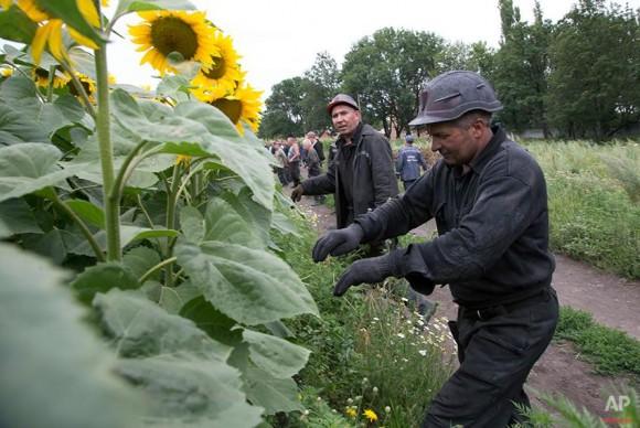 víctimas avion ucrania (3)