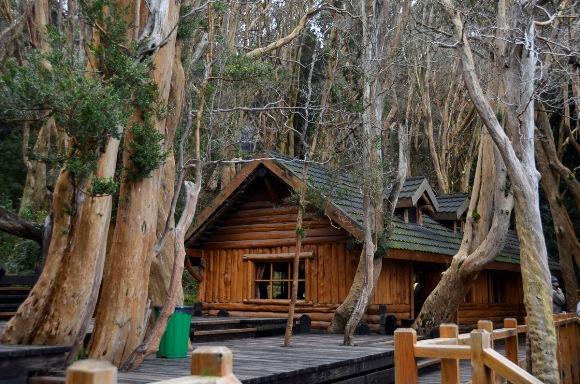 Bosque de Arayanes