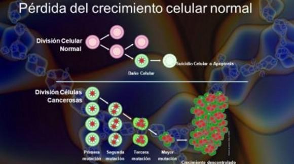 Científicos-crean-molécula-que-causa-autodestrucción-de-células-cancerosas-