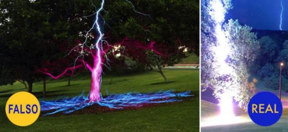 El árbol alcanzado por un rayo