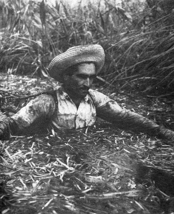 Carbonero dentro de los pantanos en la década del 40 del Siglo pasado.