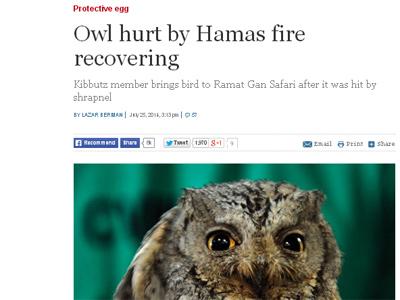 """La portada del diario 'The Times of Israel' publica una información en la que destaca la recuperación de la rapaz y lamenta que """"la pobre criatura"""" perdiera la visión en un ojo"""