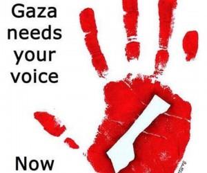 Gaza necesita tu voz: AHORA.