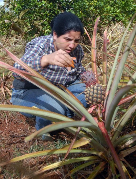 Las jóvenes asumen con orgullo los compromisos en el quehacer agropecuario.