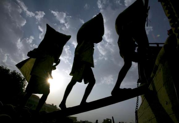 Ébola pone el jaque seguridad alimentaria de millones de africanos, según la FAO