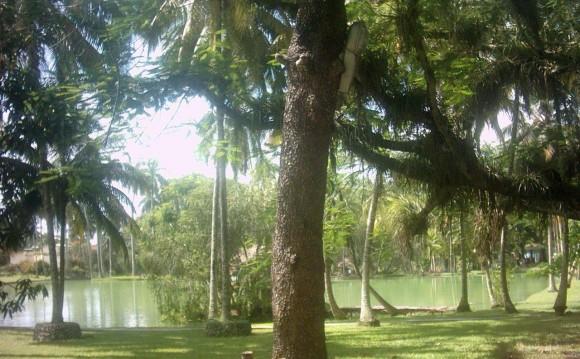 Lagos Mayajigua. Foto:  Floricel Rosabal Hernández / Cubadebate