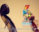 banner VI Festival 3