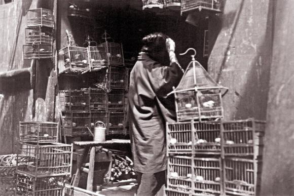 El mercado de pájaros en Pekín. La foto, sin fecha, fue tomada por Lucy Mueller, que viajó a China en 1924. Foto: Austrian Institute for China and Southeast Asia Studies.