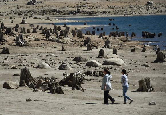 Personas caminan entre los tocones de los árboles en el lago Huntington, EE UU. Foto: AFP / Mark Ralston