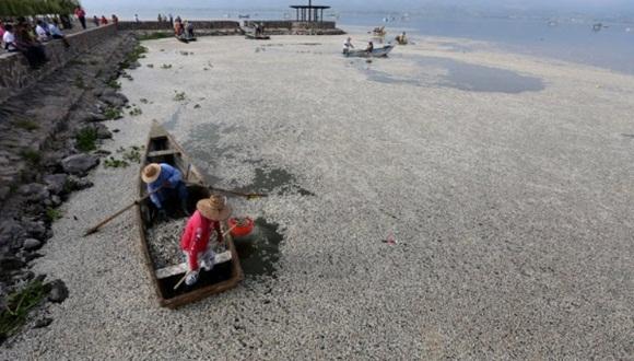 Autoridades de Jalisco no descartan ninguna hipótesis relativa al caso. Foto: EFE.