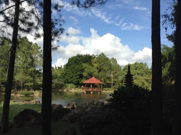 Jardin Botanico Nacional, bello, imponente y a veces olvidado Foto: Hernán / Cubadebate