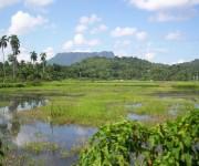 Vista del Yunque en Baracoa. Foto: Ing.Yurisley Valdes Mariño / Cubadebate