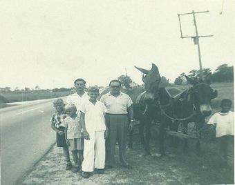 Carretón donde se movían el americano negro y su nieto.