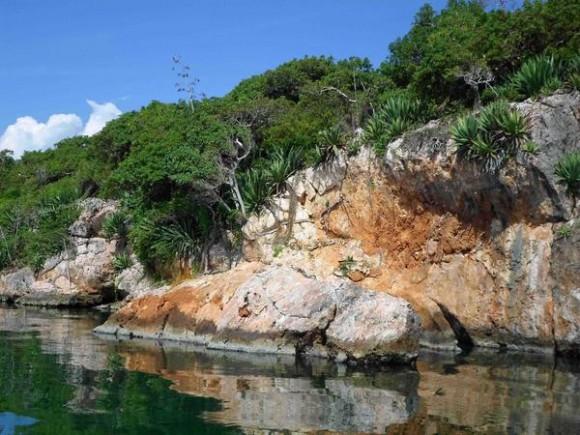 Formación rocosa y flora de Cayo Ají Chico, uno de los que conforman los Cayos de Piedra, formación única de su tipo en el país, ubicada en la Bahía de Buenavista, en la porción correspondiente al Parque Nacional Caguanes, en Sancti Spíritus, Cuba, el 19 de octubre de 2014.    AIN FOTO/Oscar ALFONSO SOSA/