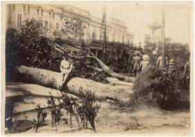 Parque de la Fraternidad en el Huracán de octubre de 1926.