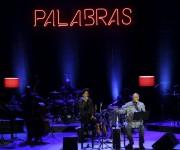 Haydeé Milanés y Pablo Milanés. Foto: Ladyrene Pérez/ Cubadebate