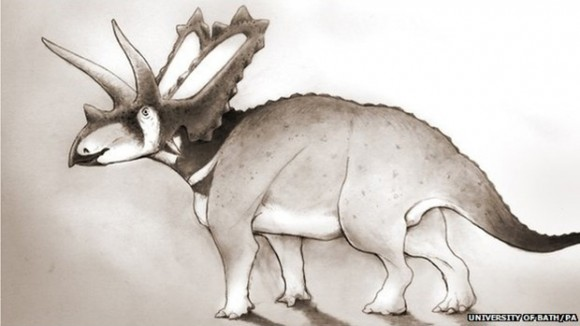 Pentaceratops aquilonius is seen in this photo from the University of Bath