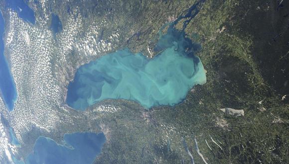 Una vista de plancton a través de una gran parte del lago Ontario. Foto: Reuters