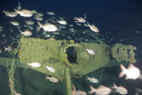 Los restos del S.S. Ventnor hoy: hundidos cerca de la bahía Hokianga