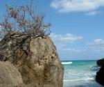 perfil rocoso mirando al horizonte Playa Del Artista en el Peñón del Fraile,  tomada por Raúl Aguilar.