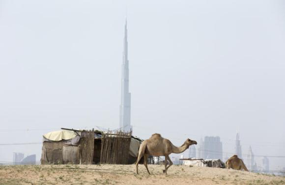 En la imagen se aprecia el contraste de una vivienda básica con el edificio Burj Khalifa en el fondo mientras un camello pasa caminando el 17 de abril de 2014 en Dubai, Emiratos Árabes Unidos.(Photo by Warren Littl