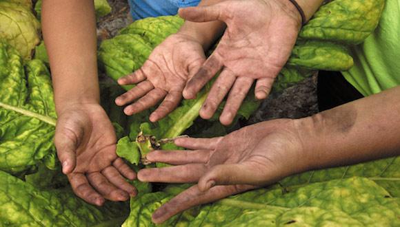 niños trabajadores esclavos foto yesenia cuello