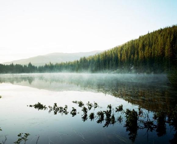 Trent Davis tomó esta espectacular fotografía del Lago del Oso, en el Parque Nacional de las Montañas Rocosas.