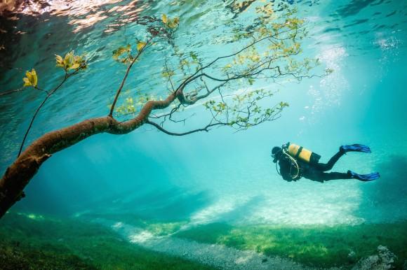 Las fotos de 2014 más asombrosas de National Geographic3