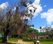 Paisaje de un poblado en la zona montañosa de Santiago de Cuba. Foto: Yoaris Hernández Martínez / Cubadebate