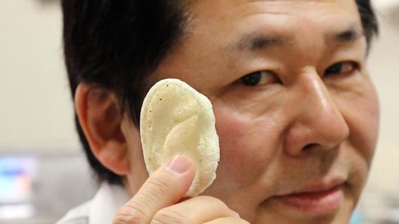 Tsuyoshi Takato, profesor de la Universidad del Hospital de Tokio, muestra un oído artificial hecho de ácido poliláctico y diseñado por una impresora 3D en su laboratorio en Tokio, el 16 de enero 2015. Foto: Phys