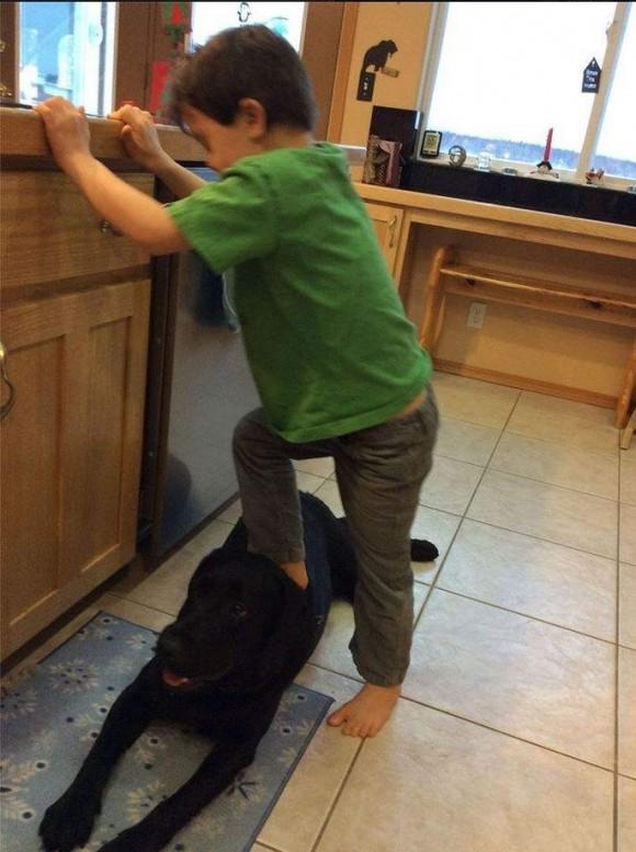 Trig Paxson Van Palin, hijo de la exgobernadora de Alaska Sarah Palin, subido al perro de la familia. Foto: Facebook de Sara Palin