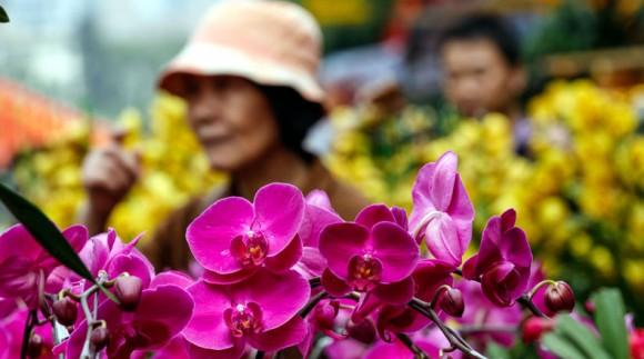 Clientes seleccionan flores en un mercado de flores en la víspera del Festival de Primavera, en Shenzhen, de la provincia de Guangdong, en el sur de China, el 18 de febrero de 2015. Personas en Guangzhou tienen la tradición de llevar a sus hogares flores festivas previo al inicio del Año Nuevo Lunar, tradición que se cree atrae la buena suerte. (Xinhua/Mao Siqian) (rhj) (sp)