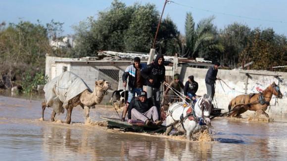 Gaza inundación (5)