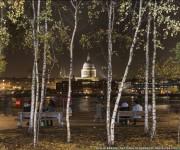"""Philip Braude fotografió la catedral de St. Paul, en Londres, enmarcada por los abedules de la ribera sur del Támesis. Fue la imagen ganadora en la categoría """"Urbana"""". Foto: BBC Mundo."""