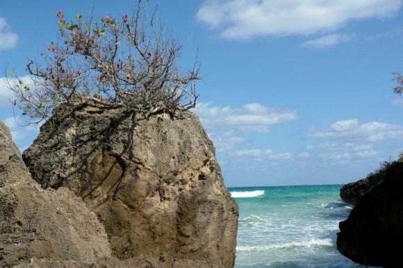 Perfil rocoso mirando al horizonte.Playa Del Artista en el Peñón del Fraile. Foto: Raúl Aguilar / Cubadebate.