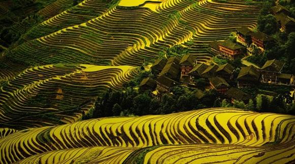 Dazhai es el nombre de una comunidad de varios cientos de agricultores en Xiyang County, China