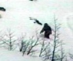 Una fotografía atribuida al legendario Yeti.