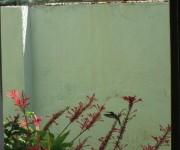 Zunzún en el patio de la casa. Foto Vitaliana Argüelles / Cubadebate