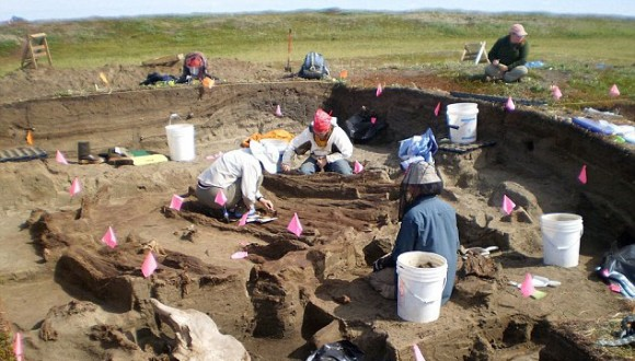 Arqueólogos trabajando en Rising Whale, Alaska. Foto: Universidad de Colorado