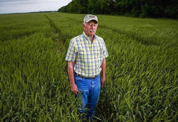 """""""Yo sólo quiero centrarme en la venta de trigo"""", dijo Ben Scholz, un agricultor de un suburbio de Dallas Lavon que es parte de una delegación de Texas de viajar a Cuba para encontrar nuevos mercados tras la decisión de la administración Obama para normalizar las relaciones."""