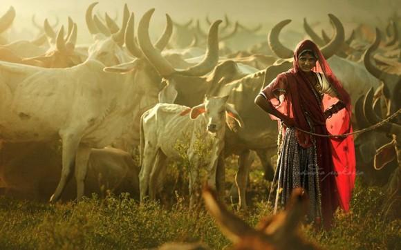 Foto: Rarindra Prakarsa.