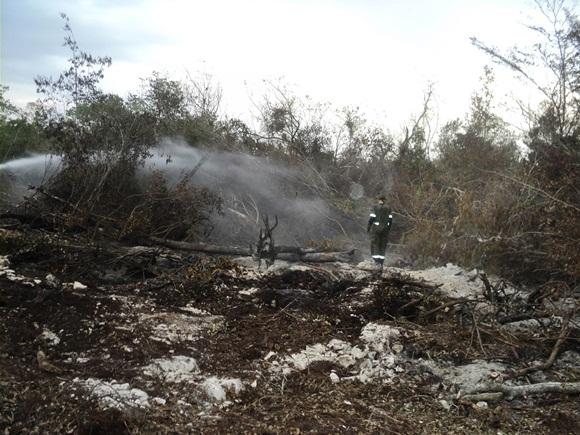 Fuerzas combinadas de bomberos y guardabosques intentan apagar el incendio subterráneo, que hace arder la llamada turba o materia orgánica, en la Ciénaga de Zapata.