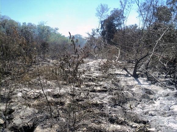 Pese a la ausencia de llamas en la superficie, el siniestro permanece activo bajo la superficie mientras arde la materia orgánica, en Ciénaga de Zapata.