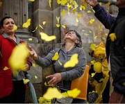 mariposas amarillas por el gabo