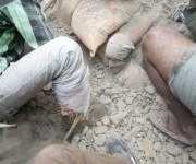 En imágenes, devastación en Nepal