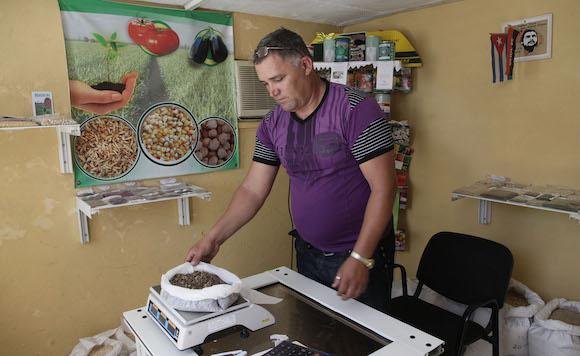 Tienda de venta de Semillas, de la empresa de Villa Clara. Foto: Ismael Francisco/Cubadebate.