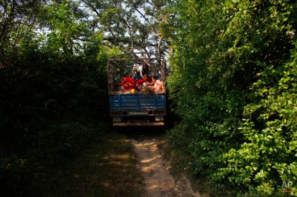 Nepal Organ Trafficking