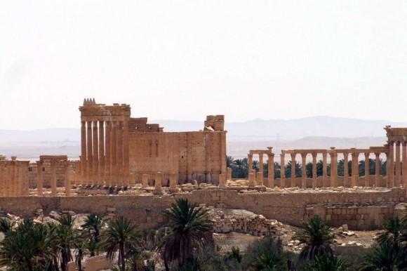 Palmira (10)