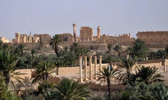 Palmira (2)